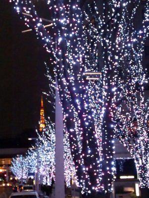 20130123 けやき坂から東京タワー.JPG