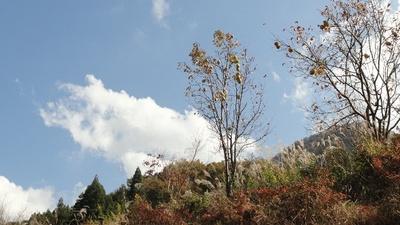 20131117 袋田の滝2.JPG