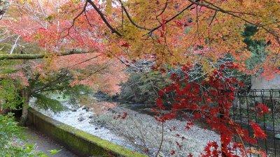 20131117 袋田の滝5.JPG