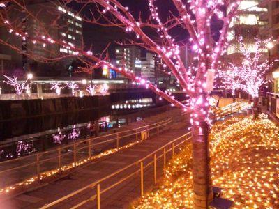 20131221 目黒川桜イルミ3.JPG