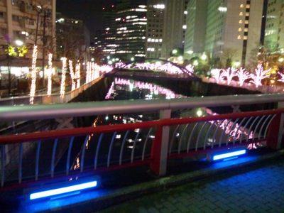 20131221 目黒川桜イルミ7.JPG