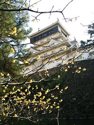 20140222 9小倉城8.JPG