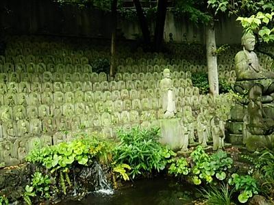 20140727 目黒大円寺2.JPG