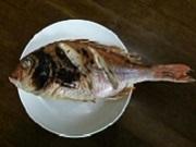 20140815 焼き鯛.jpg