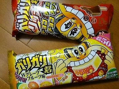 20141018 ガリガリ君チョコ&グレープフルーツ.jpg