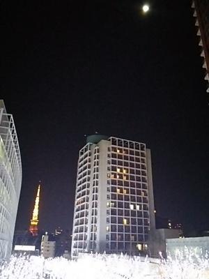 20160125 六本木けやき坂イルミ1.JPG