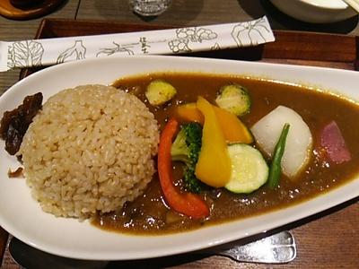20160217 玄米薬膳カレー.JPG