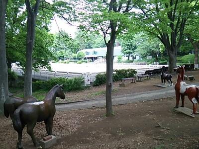 20160503 根岸森林公園6.JPG