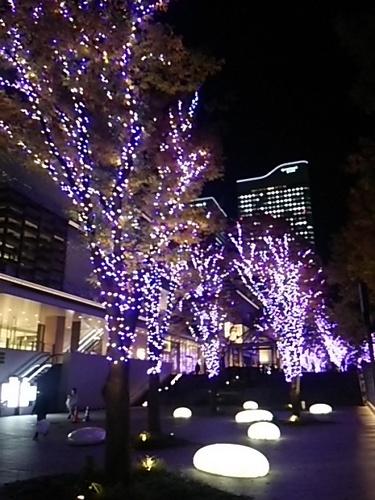 20161117 横浜みなとみらいイルミ3.JPG