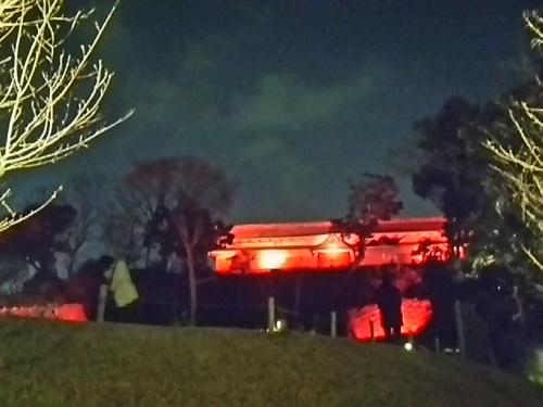 20170319 ライトアップ金沢城公園玉泉院丸庭園5.JPG