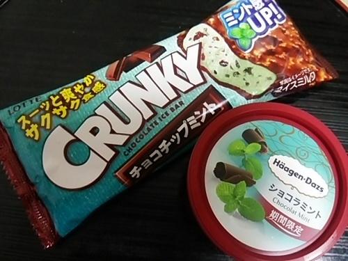 20170518 チョコミントアイス.JPG