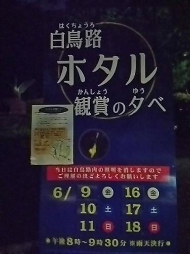 20170610 白鳥路ホタル観賞の夕べ1.JPG