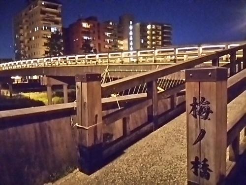 20170617 梅の橋2.JPG