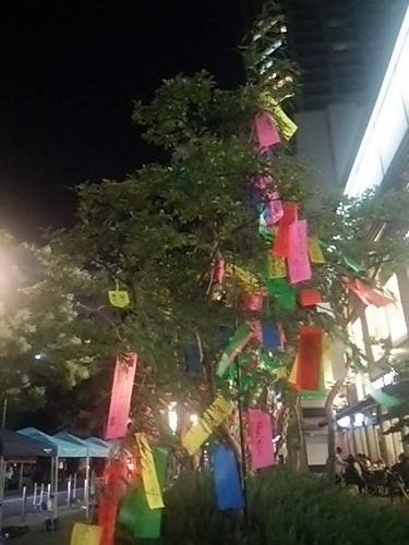 20170630 七夕飾り@白金アエルシティ.JPG