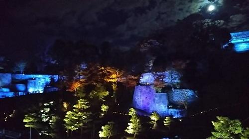20171202 玉泉院丸庭園ライトアップ2.jpg