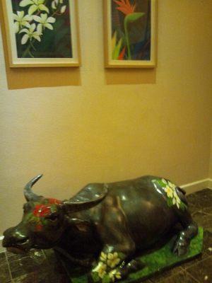 20130214 カラバオ水牛.JPG