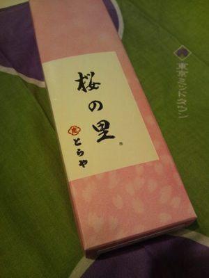 20130317 とらや桜の里.JPG