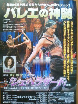 20130713 バレエの神髄.JPG