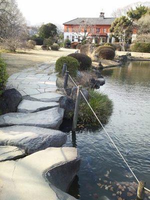 20140126 小石川植物園6.JPG
