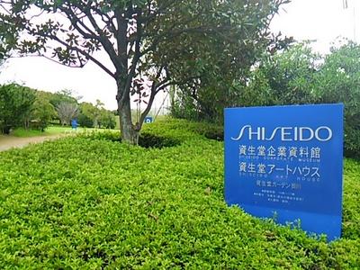 20140830 資生堂アートハウス1.JPG