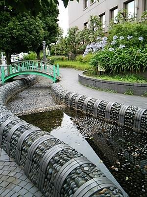 20150627 世田谷砧公園4.JPG