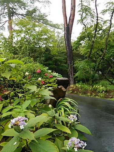 20150830 岡田美術館3.JPG