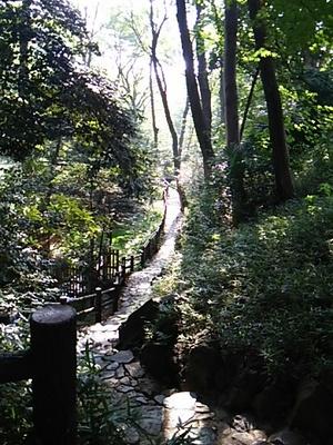 20151024 有栖川宮記念公園1.JPG