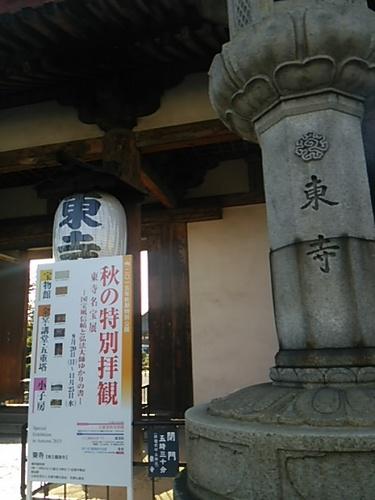 20151028 5東寺3.JPG