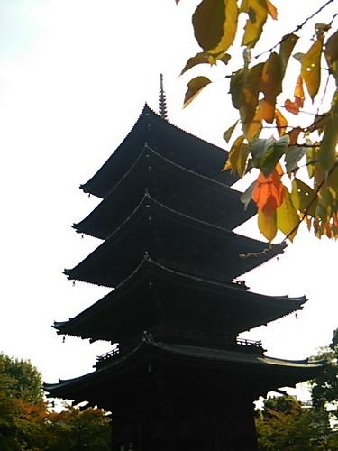 20151030 京都14東寺2.JPG