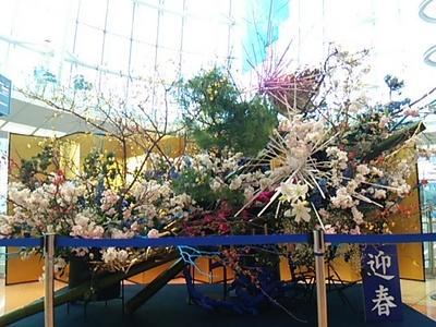20151229 羽田空港1.JPG