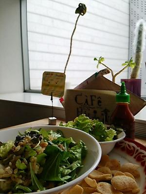 20160130 Cafe Hai.JPG