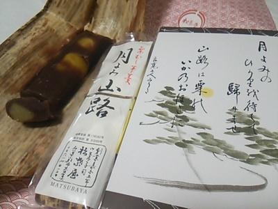 20160325 月よみ山路.JPG