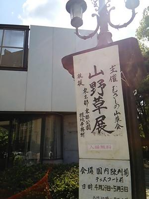 20160430 山野草展.JPG