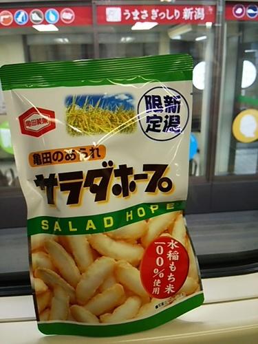 20161014 10新潟サラダホープ.JPG