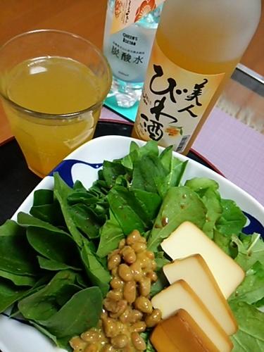 20170403 発酵食.JPG