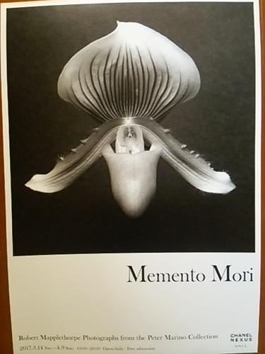 20170409 Memento Mori.JPG