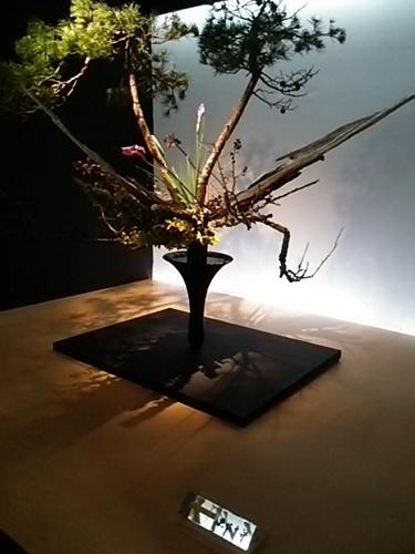 20170527 池坊花展4.JPG