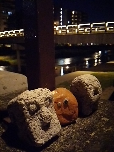 20170617 梅の橋1.JPG