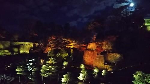 20171202 玉泉院丸庭園ライトアップ1.jpg