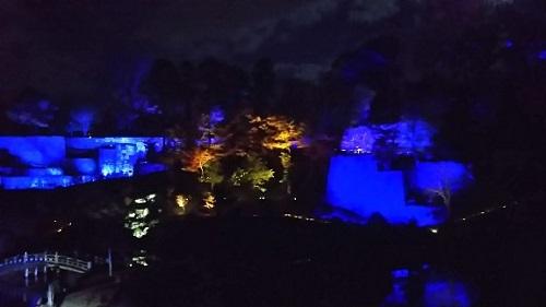 20171202 玉泉院丸庭園ライトアップ3.jpg