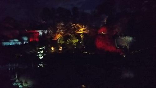 20171202 玉泉院丸庭園ライトアップ5.jpg