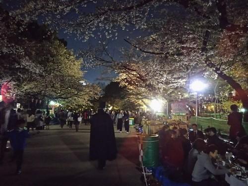 20180330 上野公園の夜桜4.jpg