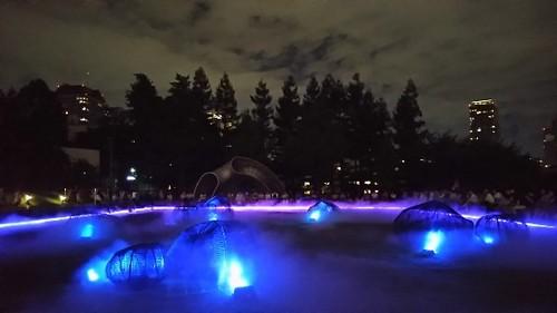20180825 光と霧のデジタルアート庭園1.jpg