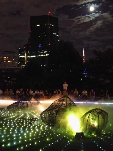 20180825 光と霧のデジタルアート庭園5.jpg