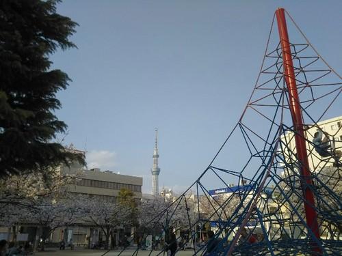 20190406 墨田区緑町公園1.jpg