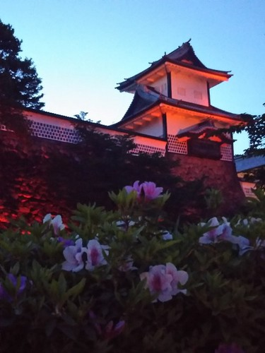 20190511 石川門ライトアップ&ツツジ.jpg