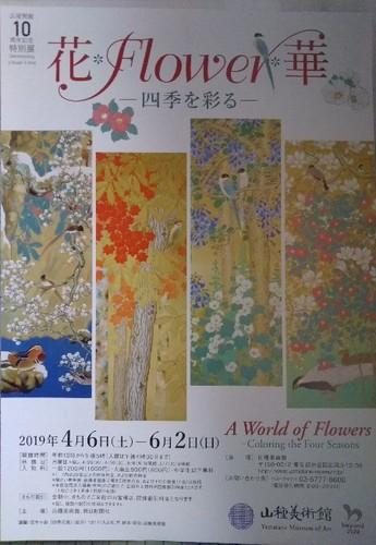 20190518 花Flower華.jpg