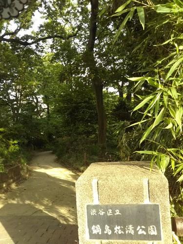 20190526 渋谷区立鍋島松濤公園1.jpg